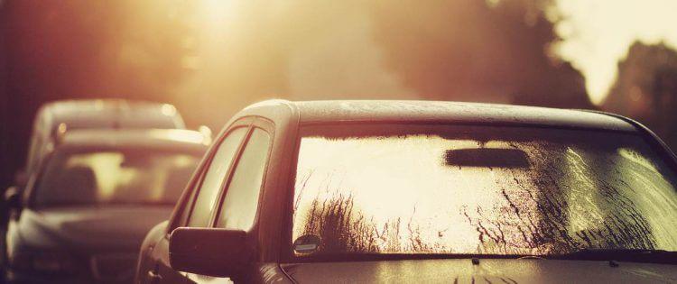 Ipertermia - Colpo di calore - Auto sotto il sole